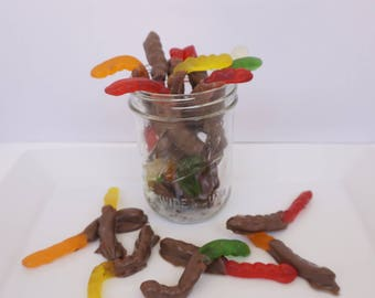 Chocolate Dipped Gummy Worms