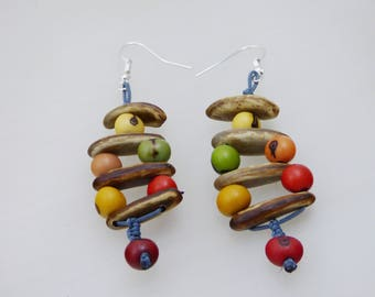 Colorful exotic seeds earrings