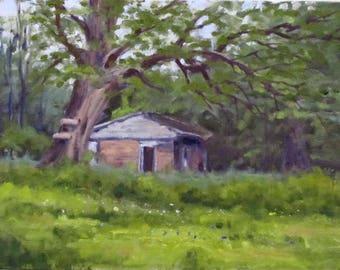 Original Plein air oil painting by artist Paula Hodge 8x10 on Canvas board