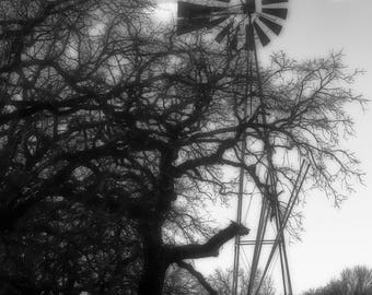 Texas Hill Country Windmill and Tree Black and White, Landscape Photography, Home Decor, Interior Design