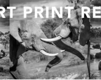 """Fine Art Print 16″ X 12"""""""
