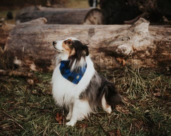 Blue Buffalo Plaid Dog Bandana, Dog Scarf