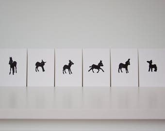 little donkeys / set of 6 postcards