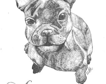 Personalised Animal Portraits
