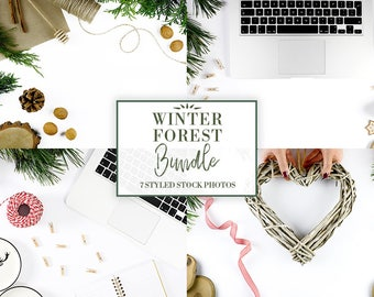Winter Forest | Styled Stock Photography | Flat Lay Photo | Social Media Photo| Nature | Workspace | Stationery | Bundle |