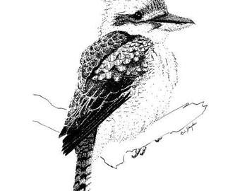 Australian Animal Series: Laughing Kookaburra print. Black and white
