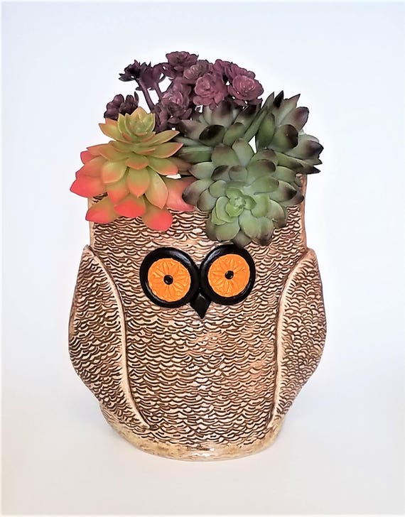 Owl Succulent Planter - Handmade Pottery - Ceramic Owl Vase - Utensil Holder - Graduation Gift - Owl Collector - Bird - Vase - Planter
