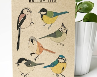 British Tits card - illustrated bird card - card for birdwatcher - nature card - eco friendly / recycled / kraft