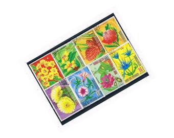 Large Colourful Flower Stamps from Equatorial Guinea | Vintage Retro 1970s, seventies, used postage stamps | floral decoupage collage supply