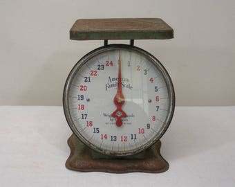 Vintage Green American Family Scale