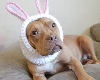 Bunny Dog Hat - Dog Hat - Hats for Dogs - Gift for Pet Lovers - Animal Hat - Bunny Hat - Doggie Hat