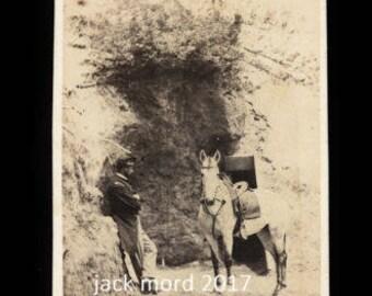 Rare CDV Photo Civil War Soldier with Captured Confederate Horse - Brady 1860s