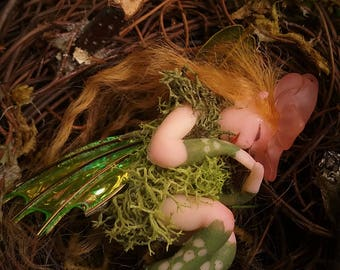 Green Nestling Pixie, Fairy House Fairy, Forest Fairy in Nest, Hand sculpted without molds, Sleeping Faerie, Sleeping Pixie