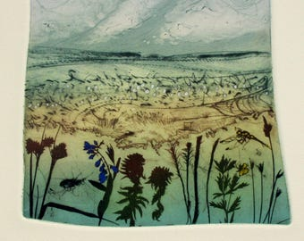 Cranmere Pool, Dartmoor Devon. Landscape art of Devon wildlife. Drypoint with photo etching.