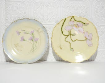 Vintage Pair of Fine China Plates H and C co