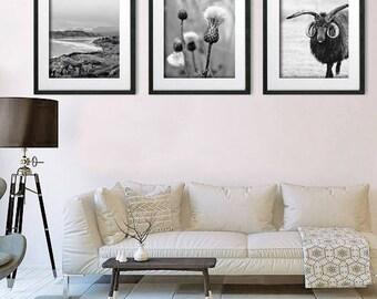 Set of 3 Black and White Wall Art, Modern Art, Scottish Photography, Set of 3 Prints, Highland, Mountain, Thistle, Sheep Art, Print Set of 3