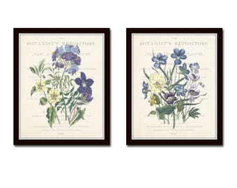 Garden Flowers Print Set No.22, Collage, Botanical Prints, Giclee, Art Print, Antique Botanical, Botanical Print Set, Botanical, Wall Art