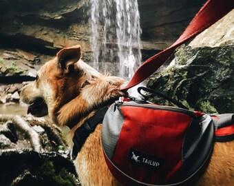 pack hound rack