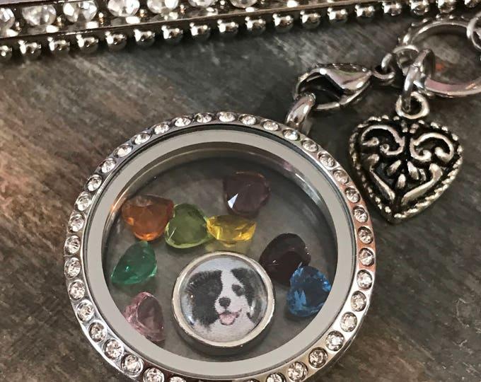 Rainbow bridge crystal hearts memorial picture locket