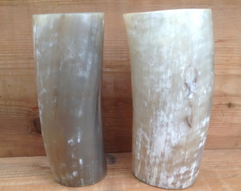 Pair of vases made of horn