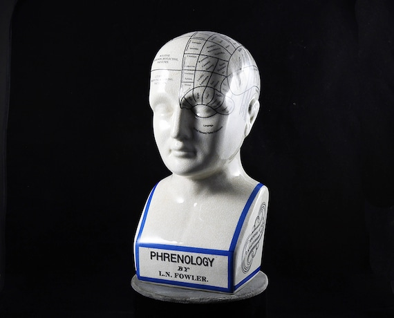 Phrenology Head Phrenology Bust 12 inch L.N. Fowler Porcelain Ceramic Crackle Grazed  Statues Steampunk