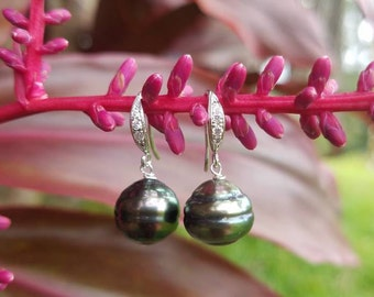 Dainty sterling silver tahitian pearl lever back earrings