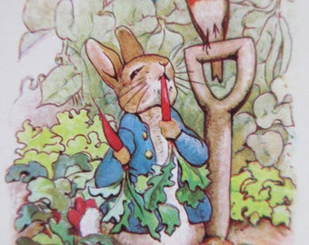 Vintage Playing Cards, Peter Rabbit Playing Cards, Hoyle Cards, Two Decks, Beatrix Potter Characters, Peter Rabbit Cards, Plastic Coated