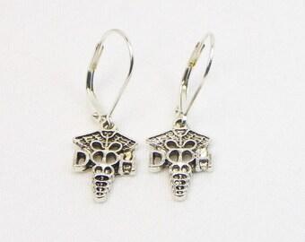 Dental Hygenist Earrings - Dental Earrings - Hygenist Gift - Dangle Earrings - Gift For Her