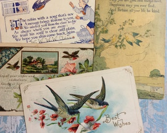Vintage Postcards Bird Ephemera Antique Greeting Cards
