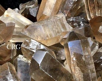 """Natural Smoky Quartz Crystal 1/2 Lb. 2"""" - 3"""" L (CRQSM-8)"""