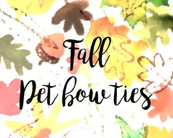 Herbst Haustier Fliege, Danksagung Haustier Fliege, Fliege, Fliege Katze  Hund  [
