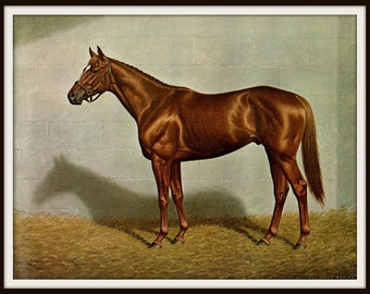 Affirmed painted by Richard Stone Reeves. This bookplate is 15 inches wide and 12 inches tall and is the original page.