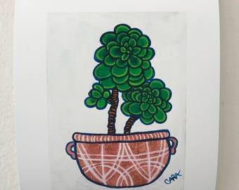 One Potted Succulent, Fine Art Print, Succulent Wall Art Decor, Succulent Print, Succulent Home Decor