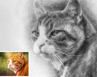 Custom Pet Portrait |Dog/Cat portrait  | Personalized Gift Idea | Pencil Pet Portrait | Personalized Pet Portrait | Custom Dog Portrait