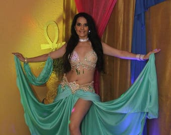 Amazing professional bellydance costume made in Egypt ( Bra, belt and Skirt )