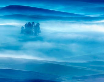 """Original Artist Print -- """"The Blue Hour in the Palouse Grass"""" by Donna Caplinger. Foggy morning in Palouse WA."""