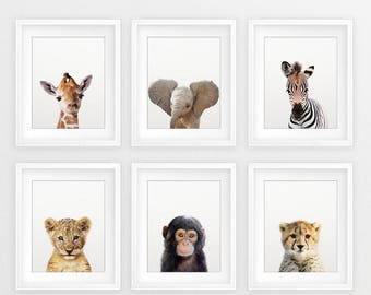 Safari Nursery Decor, Baby Animals Set 6, Lion Zebra Elephant Giraffe, Nursery Prints Modern Animal Art, Safari Animals, Kids Room Printable