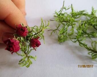 Dried moss, moss green tiny wood, moss jewelry resin, organic moss, moss art, craft supply