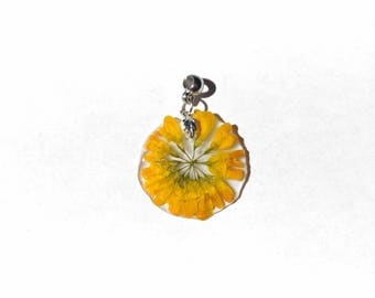 Pendant yellow sun flower plant genuine
