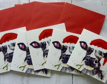 Festive Moo, set of five greetings cards from a watercolour by Pauline Merritt
