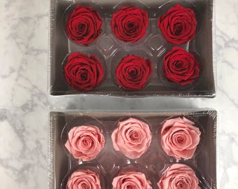 Preserved Roses: Set of 12 red roses that last up to one year!