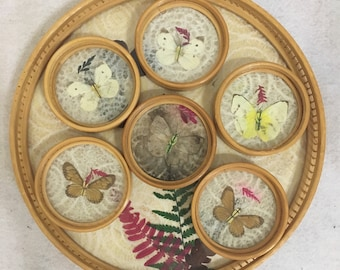 Vintage Wicker Butterfly Coasters