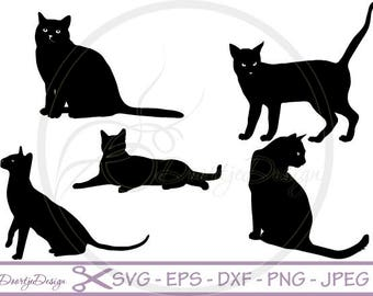 SVG Cats in vector, SVG cut files, scrapbook supplies, Vector Files, Clip Art, svg files Cats, DXF files