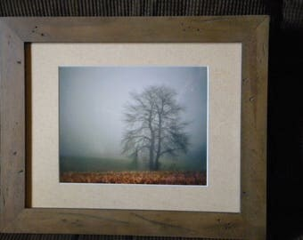 After the Harvest: Individually numbered artist's print. Matted & framed original photography by PatriciaDawnDesigns