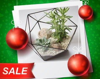 NY Discount -10% / Middle Icosahedron / Stained Glass Terrarium / Handmade Glass Planter / Stained glass vase