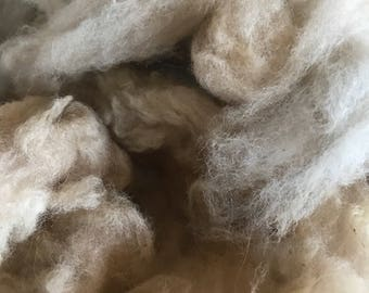 Paco-Vicuña Fiber Colorado-Raised Fleece  Natural Colors White and Beige Rare Soft