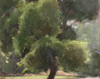 Boise Greenbelt Tree - Original Plein Air Oil Painting 9X12""