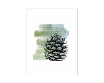 Pinecone Art Print, Rustic Botanical Modern Decor, Minimalist Nature Blue Green, Pacific Northwest, Poster Wood Panel Canvas, Gift for Dad