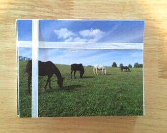 """Handmade Note Cards """"Horse Pasture"""" Original Design: 10 Cards and 10 Envelopes - Horse Country Stationery"""