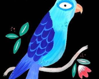 The parakeet painting watercolor gouache illustration bird feather blue botanical curiosity cabinet exotic 21.5 cm x 14 cm
